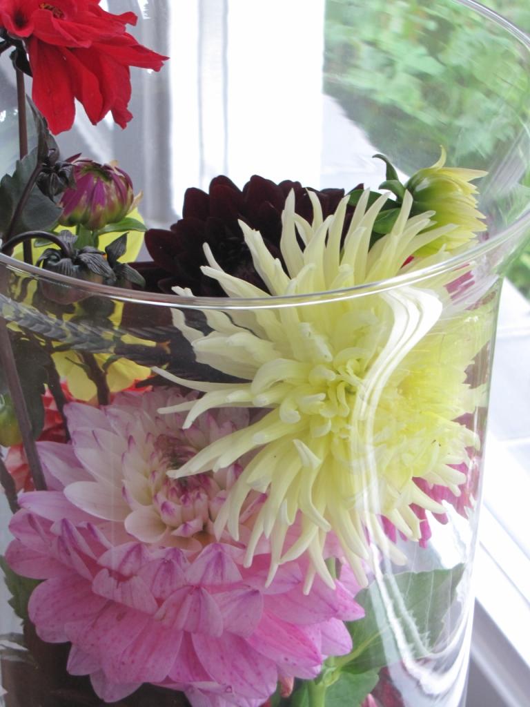 Verschillende soorten Dahlia's in een grote glazen vaas.