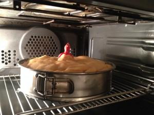 De taart in de oven - met de vogel in het midden.