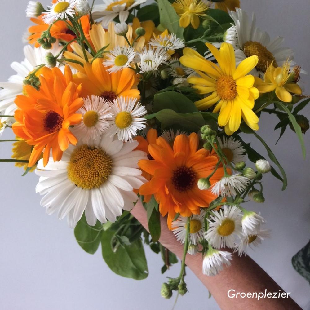 plakbloem geel oranje wit