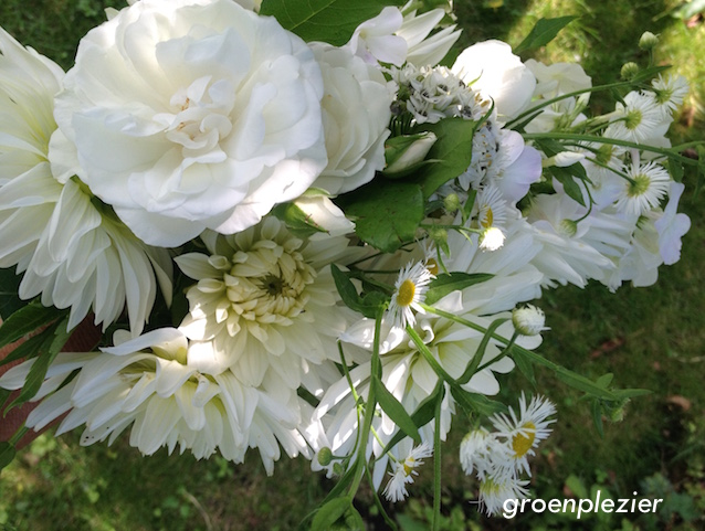 white_flower_bouquet_garden_gp